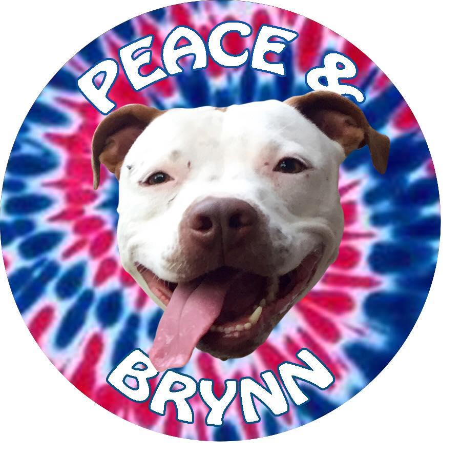Brynn-2.jpg