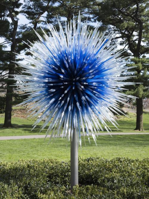"""""""Снился мне сад..."""". Выставка Дэйла Чихули в Нью-Йорке"""