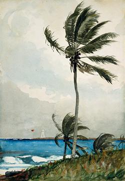 Путевые заметки. Пуэрто-Рико и Багамские острова