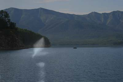 Марк Штейнберг: Пришельцы из глубин Байкала Shteynberg1%20w